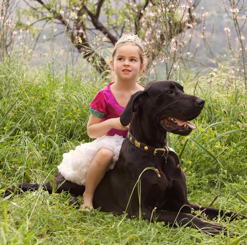 גידול של כלבים וילדים-LADOG
