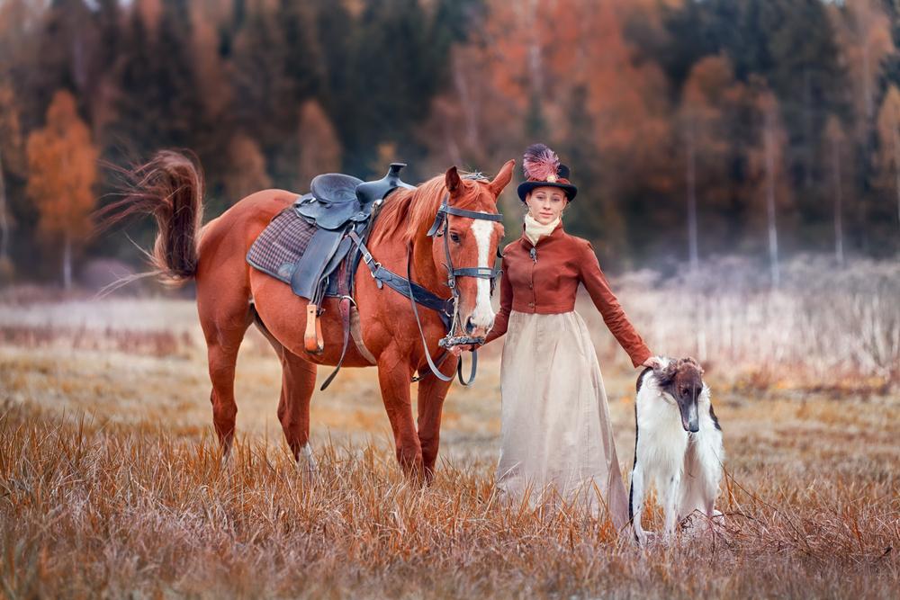 בורזוי היה כלב של האצלוה, אשר היה מתלווה לסוסים - LADOG - אילוף כלבים מקצועי