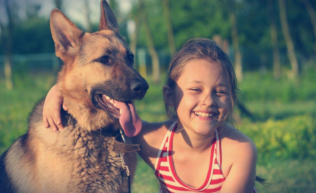 כלב משפחה מצויין -LADOG